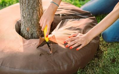 Crafty Gardener shares her Journey with the Garden Halo