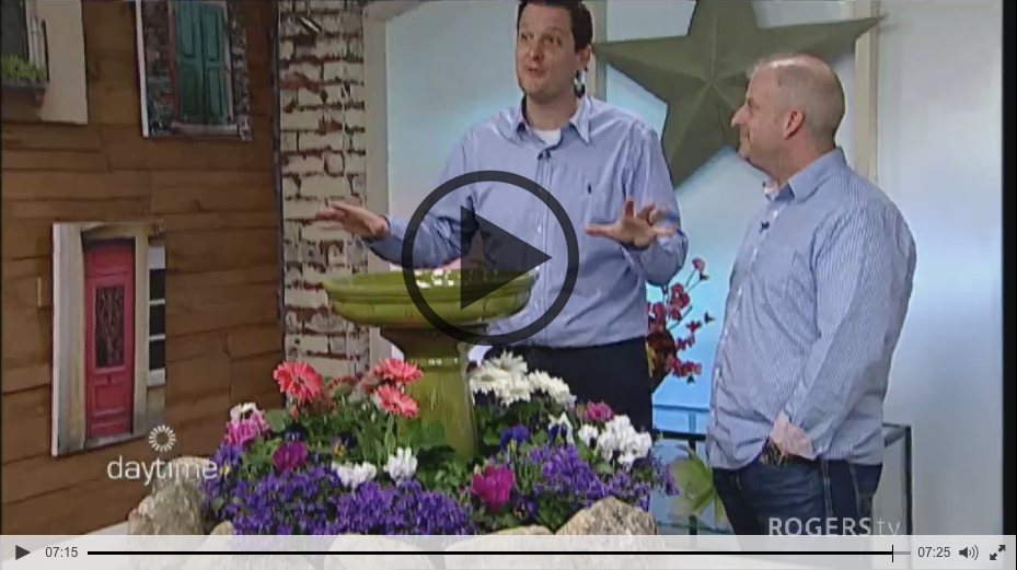 Quick Garden Launches on Rogers Daytime