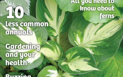 Quick Garden's Halo Featured in Ontario Gardener
