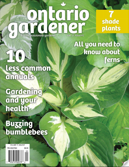 Quick Garden's Halo Featured in Ontario Gardener